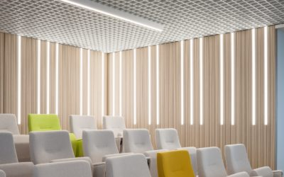 Blatantly Bold or Quietly Hiding in Plain Sight: Perforated Acoustical Panels